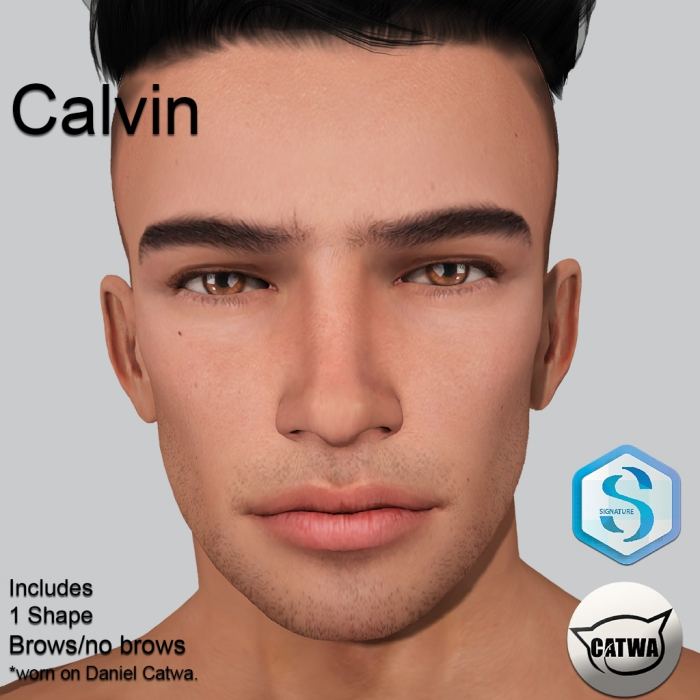 Calvin_Shelf