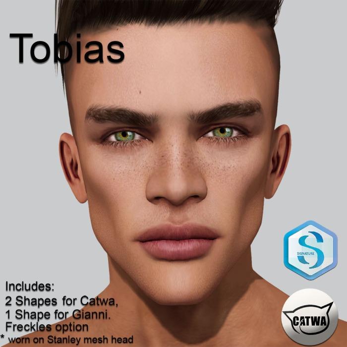 Tobias_Shelf