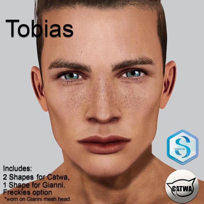Tobias_SIG_Shelf